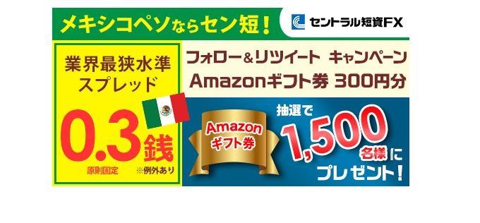 Amazonギフト券 300円分をプレゼント
